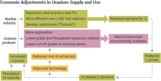Economic Adjustments in Uranium Supply and Use flow diagram