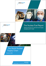 Nuclear Fuel Report and Supply Chain Report pack image